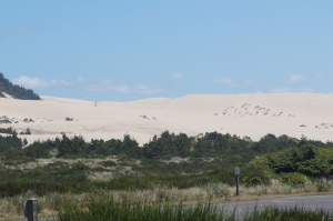 Miles of sand dunes along the ocean