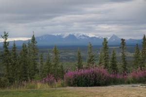 View from Copper River Lodge
