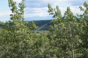 View of the Alaskan Pipeline